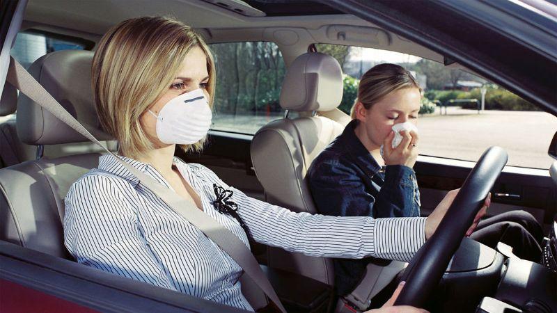 cách khử mùi trên xe ô tô mới bằng nguyên liệu tự nhiên